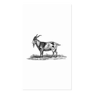 Ejemplo de la cabra nacional del vintage - cabras  tarjetas de visita