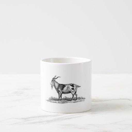 Ejemplo de la cabra nacional del vintage - cabras  tazitas espresso