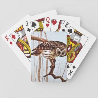 Ejemplo de la fauna del vintage del búho barrado baraja de cartas