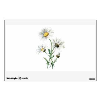 Ejemplo de la flor salvaje de las margaritas del vinilo adhesivo