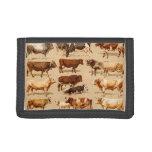 Ejemplo de la granja de las vacas lecheras de Bull