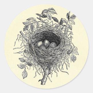 Ejemplo de la jerarquía del pájaro del vintage pegatina redonda