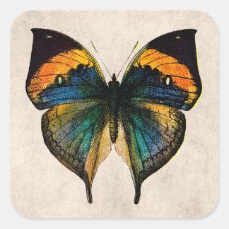 Ejemplo de la mariposa del vintage - mariposas pegatina cuadrada