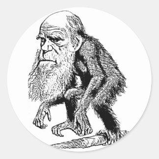 Ejemplo de la original de Charles Darwin Pegatina Redonda