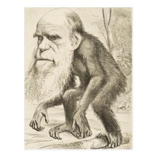 Ejemplo de la original de Charles Darwin Tarjeta Postal