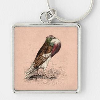 Ejemplo de la paloma del vintage - plantilla del llavero cuadrado plateado