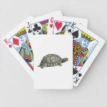 Ejemplo de la tortuga del vintage baraja de cartas