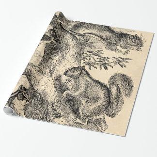 Ejemplo de las ardillas de los 1800s del vintage - papel de regalo