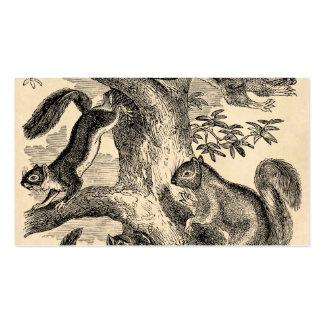 Ejemplo de las ardillas de los 1800s del vintage - plantilla de tarjeta de visita