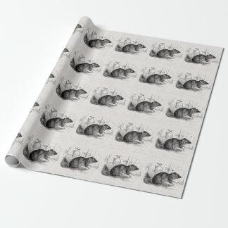 Ejemplo de las ratas de la rata del granero de papel de regalo