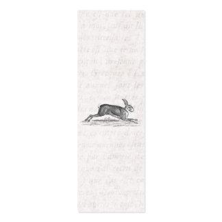 Ejemplo de los 1800s del conejo de conejito de las tarjetas de visita mini