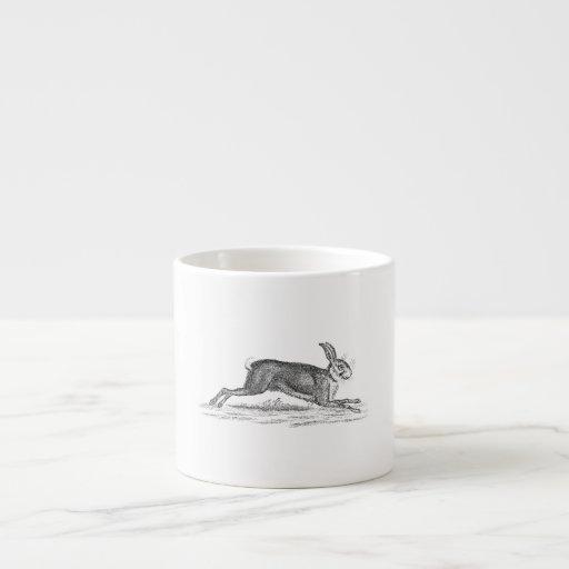 Ejemplo de los 1800s del conejo de conejito de las tazita espresso