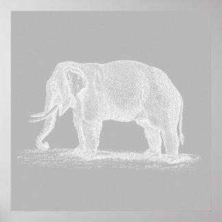 Ejemplo de los 1800s del vintage del elefante blan impresiones