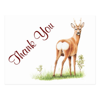 Ejemplo de los ciervos del vintage - animal lindo tarjetas postales