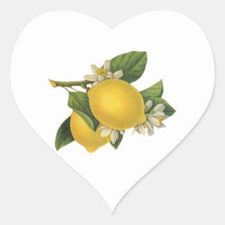 Ejemplo de los limones del vintage pegatina en forma de corazón