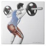 Ejemplo de los músculos usados por el hombre para  azulejo ceramica