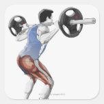 Ejemplo de los músculos usados por el hombre para calcomania cuadrada personalizada