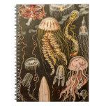 Ejemplo de los pescados de jalea de la antigüedad  libretas espirales