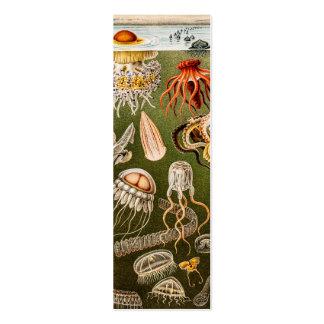 Ejemplo de los pescados de jalea de la antigüedad  plantillas de tarjeta de negocio