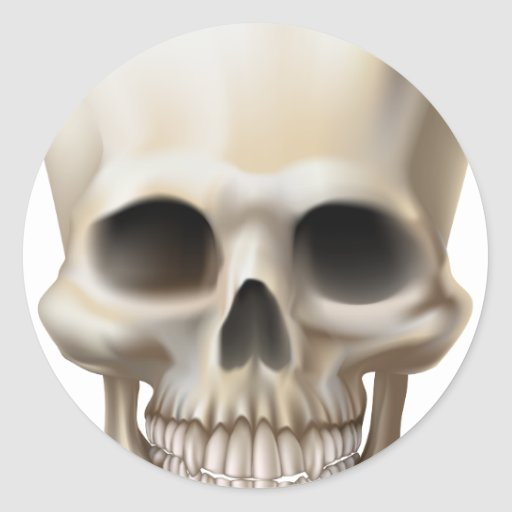 Ejemplo de un cráneo humano etiquetas