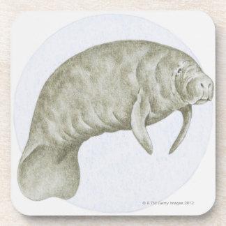 Ejemplo de un Manatee (SP de Trichechus.) Posavasos