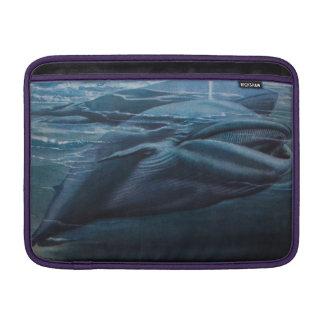 Ejemplo de una ballena gráfico azul del vintage