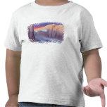 Ejemplo de viajar del dirigible camiseta