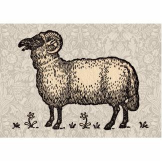Ejemplo del animal del campo de las ovejas del vin escultura fotografica