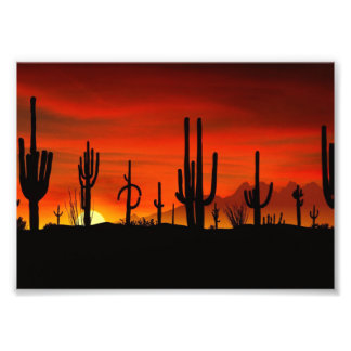 Ejemplo del árbol del cactus cuando la puesta del cojinete