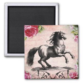 Ejemplo del caballo del vintage imán cuadrado