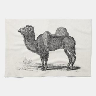 Ejemplo del camello de los 1800s del vintage - cam toallas de cocina