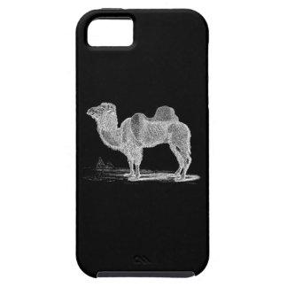 Ejemplo del camello de los 1800s del vintage - iPhone 5 funda