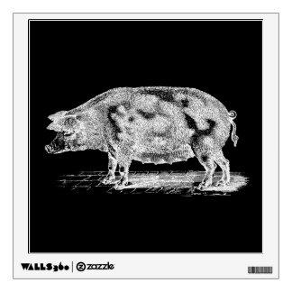 Ejemplo del cerdo de los 1800s del vintage - vinilo
