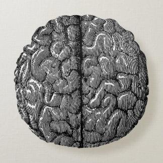 Ejemplo del cerebro humano del vintage cojín redondo