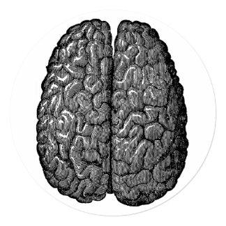 """Ejemplo del cerebro humano del vintage invitación 5.25"""" x 5.25"""""""