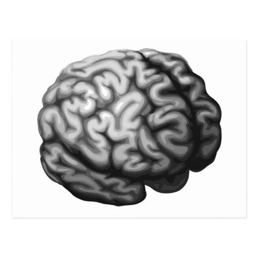 Ejemplo del cerebro postal