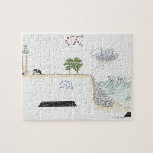 Ejemplo del ciclo de carbono en la tierra puzzle