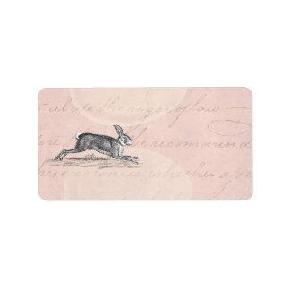 Ejemplo del conejo de conejito de las liebres del  etiquetas de dirección