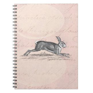 Ejemplo del conejo de conejito de las liebres del spiral notebooks
