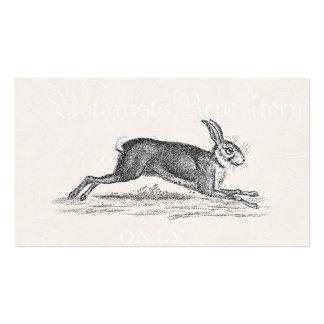 Ejemplo del conejo de conejito de las liebres del plantilla de tarjeta de visita