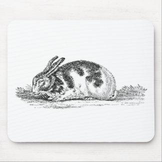 Ejemplo del conejo de conejito del vintage - conej alfombrillas de ratón