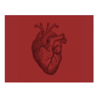 Ejemplo del corazón del vintage tarjetas postales