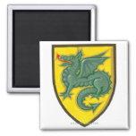 Ejemplo del dragón verde que pega hacia fuera rojo imanes de nevera