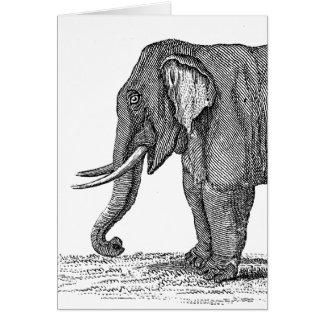 Ejemplo del elefante de los 1800s del vintage - el tarjetas