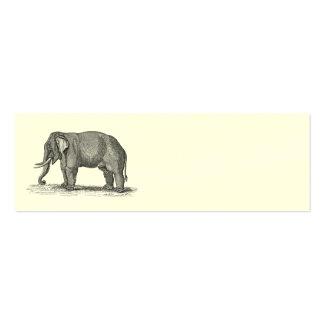 Ejemplo del elefante de los 1800s del vintage - el tarjetas de visita