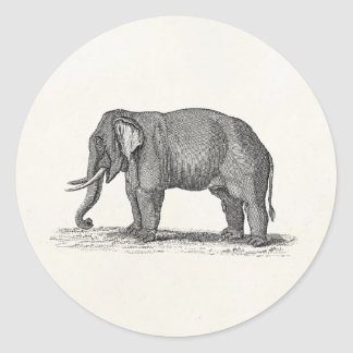 Ejemplo del elefante de los 1800s del vintage - pegatina redonda