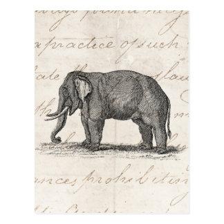 Ejemplo del elefante de los 1800s del vintage - postal