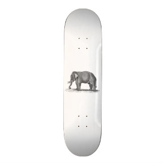 Ejemplo del elefante de los 1800s del vintage - skateboard