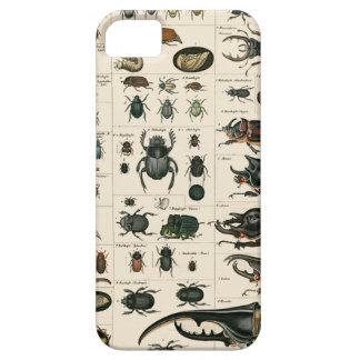 Ejemplo del escarabajo del vintage funda para iPhone 5 barely there
