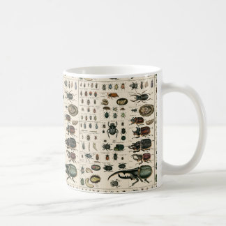 Ejemplo del escarabajo del vintage taza